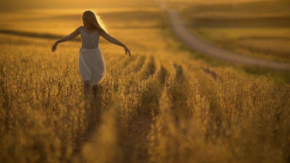 Niña paseando entre el trigo