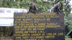 Warnings at park entrance