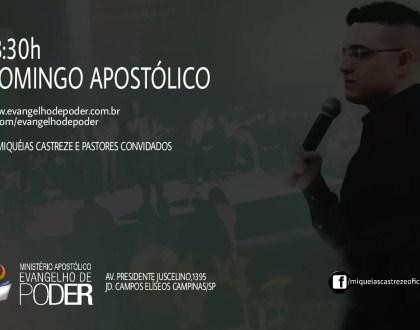 Domingo Apostólico