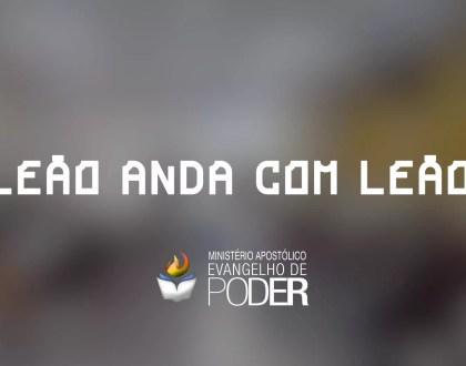 LEÃO ANDA COM LEÃO