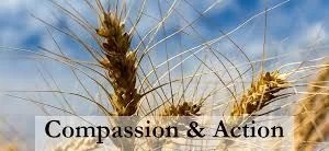 Compassion & action