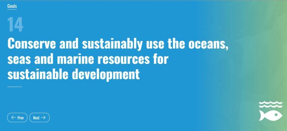Seventeen Sustainable Development Goals