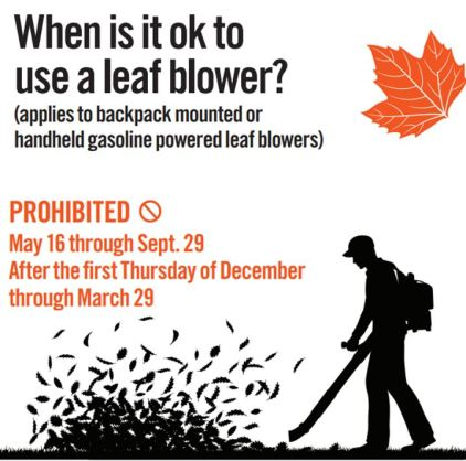 When is it ok to use a leaf blower