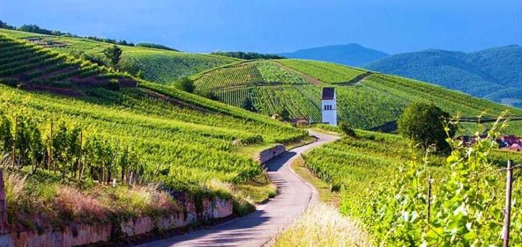 Route des Vins d'Alsace - Evasion Cars Chauffeur Privé