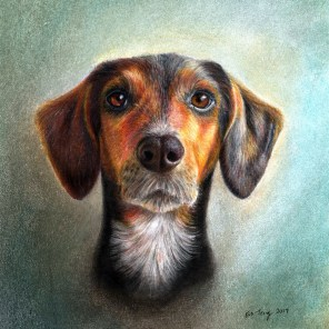 Portrait of an adorable dog