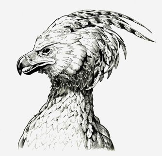 fawkes_the_phoenix_by_jerome_k_moore