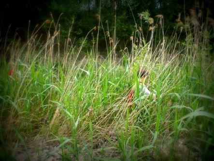 Enfant des marais