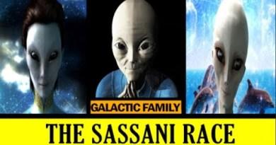 Présentation des Sassani d'Orion