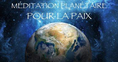 COBRA | 23 Décembre 2018 : À partager en masse-Méditation du 20-21 Janvier 2019 pour le retour de l'activation de la lumière. MAJ DU 23/01 : SUCCÈS!