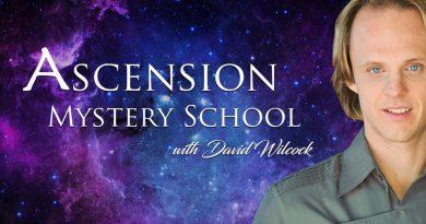 DAVID WILCOCK DANS « LES MYSTÈRES DE L'ASCENSION » : 4,5 HEURES DE NOUVELLES VIDÉOS YOUTUBE !