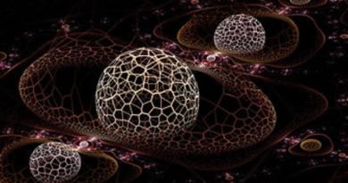 Que vous évoquent ces structures fractales ?