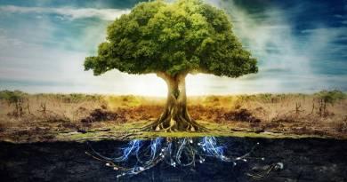 Elistire: L'émergence du nouveau champ de conscience