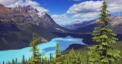 Métatron – Banff – Le vecteur magique – Rajeunissement du corps, du mental, de l'Âme –