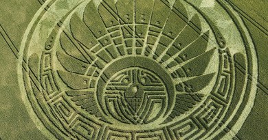 Agroglyphes ou crop circles : significations et messages