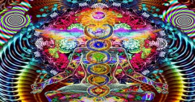 Les Douze Chakrasdes Atlantes (êtres ascensionnés en 5D)