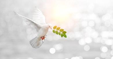 La méthode Ho'oponopono : le grand nettoyage et la transmutation des mémoires