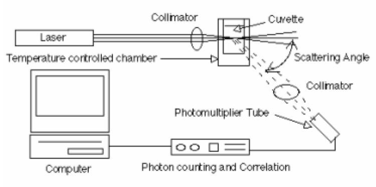 dna-phantom-diagram