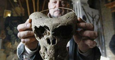 Faits intéressants : Les découvertes archéologiques incroyables de Russie (Crâne non humain, nouvel ancêtre de l'homme)