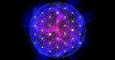 La fleur de Vie : l'antidote des géométries sacrées