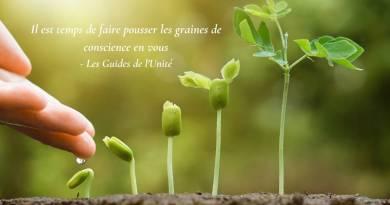 Eveil : Planter des graines Vs convaincre