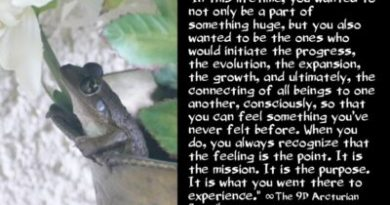 Le Conseil Arcturien : Ce que vous saviez avant de vous incarner sur Terre !