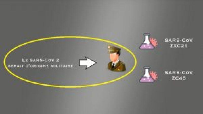 1_origine-sars-cov2-300x169-1