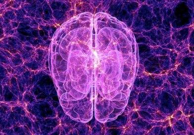 Comment accéder à la Connaissance Universelle ? Par Charlotte Hoefman