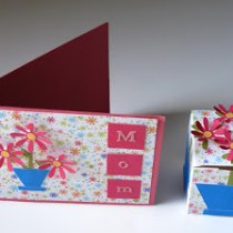 Mother's Day Card Plus Gift Box