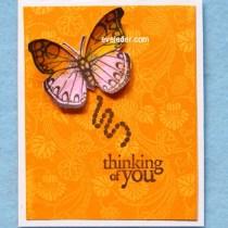 Orange-Pink Butterfly Card