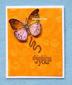 Orange-Pink Butterfly Card