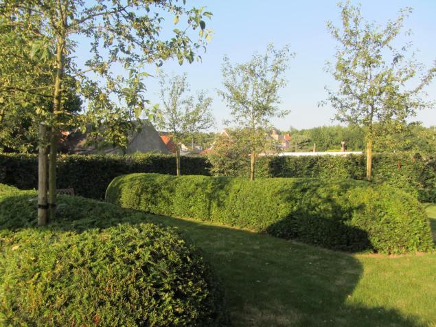 Voorbeeld_tuinen_tuinarchitect_Geel