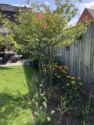 speelse tuin g