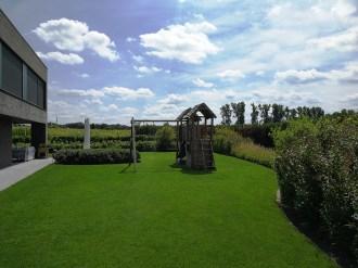 tuinarchitect Geel Evelien Claus strakke tuin