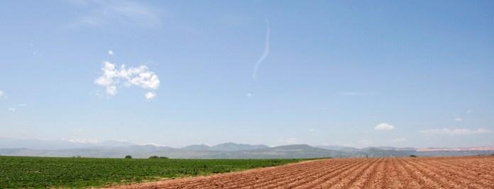 Grant Farms, Colorado June, 2011