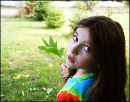 Sage. Phoenicia, New York. © Eve Bernhard, October 2008.