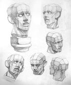 understanding the forms of the face in rigid shapes