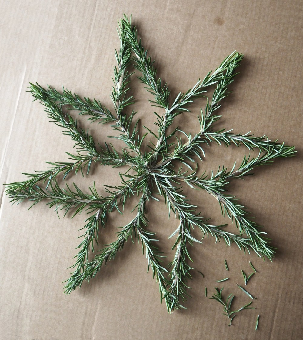 DIY Rosemary star