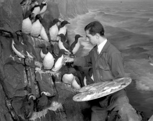 Artist Raymond deLucia works on a diorama at the American Museum of Natural History