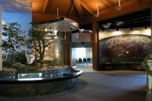 inside-coe-visitor-center
