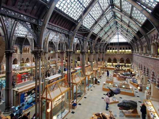 University-of-Oxford-museums4-528x396