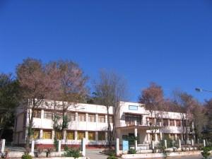 cultural-museum