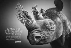 rhino_englisch_goss_aotw