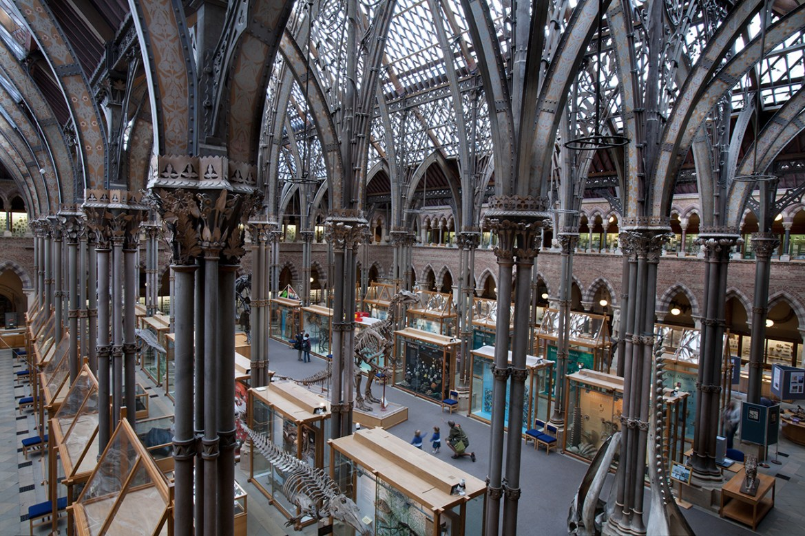 Impacto en Asociaciones Museos y Universidades