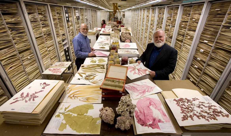 Revisión (Checklist) para la Gestión de Colecciones de Museos