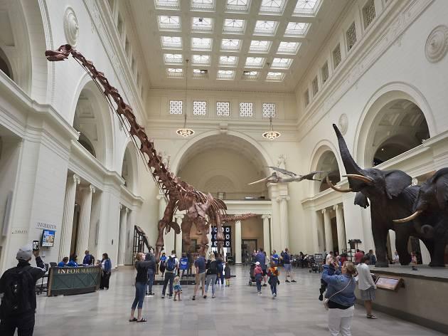 Creando un Nuevo Museo