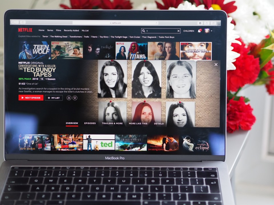 Netflix Shows You Need to Watch – evenangelsfall