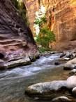 Zion National Park 2018