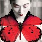 madama-butterfly-TNOB