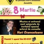 92,5x40,5_Hari Gramosteanu_8 martie NET
