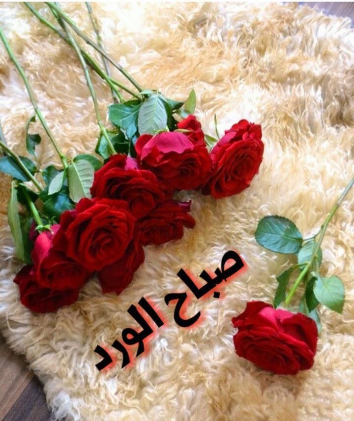 صورصباح الخير متحركة اروع صور صباح الخير المتحركة مساء الورد